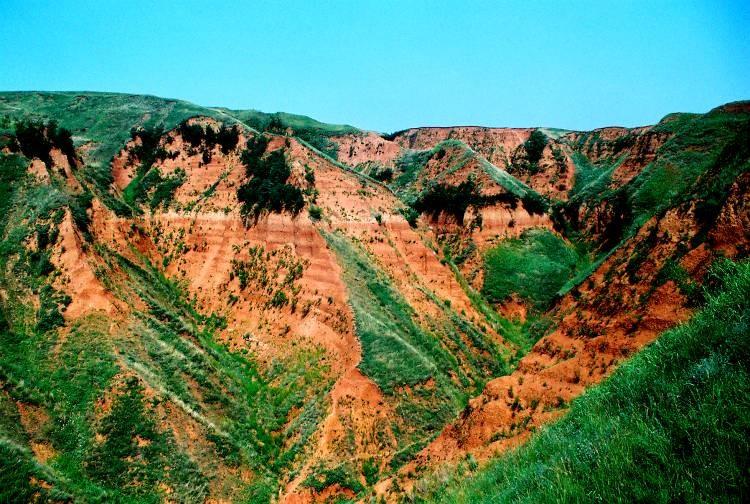 科学家发现中国黄土高原212万年以来的上陈旧石器遗址